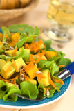 Avocado and Mango Salad Stock Image