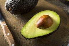 Avocado maturi organici crudi fotografie stock libere da diritti