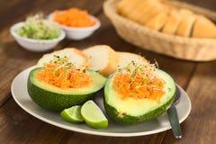 Avocado mit Karotte und Sprösslingen Lizenzfreies Stockbild
