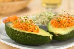 Avocado mit Karotte und Sprösslingen Stockfotos