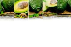 Avocado mix Royalty Free Stock Photography