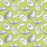Avocado naadloos patroon Hand getrokken illustraties Avocado, gesneden stukken, halve, blad en zaadschets De tropische zomer royalty-vrije stock afbeeldingen
