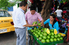 Avocado - Neiva. Kolumbien lizenzfreie stockfotos
