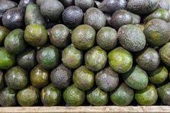 Avocado nel mercato dell'alimento Fotografia Stock Libera da Diritti