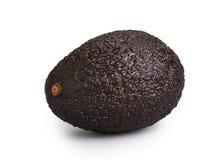 Avocado odizolowywający fotografia stock