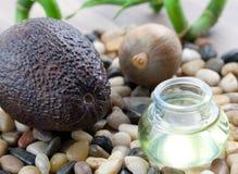 avocado olej obrazy royalty free