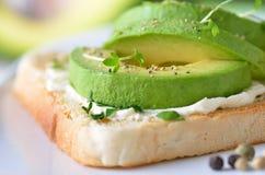 Avocado op toost Royalty-vrije Stock Afbeelding