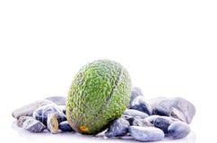 Avocado op wit wordt geïsoleerd dat Stock Afbeelding