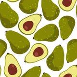 Avocado owoc bezszwowy wzór na białym tle royalty ilustracja