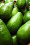 Avocado Pears. A closeup view of green Avocado pears stock images