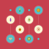 Avocado piano delle icone, dessert esotico, mais ed altri elementi di vettore Insieme di Berry Flat Icons Symbols Also Fotografia Stock