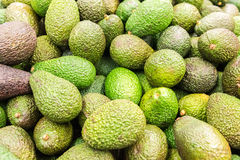 Avocado Pile In Fruit Market Royalty Free Stock Images