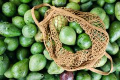 Avocado Pile Shop String Bag Closeup Top View. Healthy Green Vegetable Business in Local Tropical Marketplace. Diet Vegetarian Food Ingredient for Guacamole royalty free stock photo