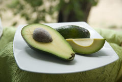 Avocado on a plate Stock Images