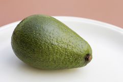 Avocado on a plate. A smooth skinned avocado on a cream colored plate royalty free stock image