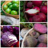 Avocado, red cabbage, red radish and beetroot Royalty Free Stock Images