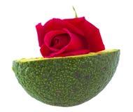 Avocado and rose Royalty Free Stock Image