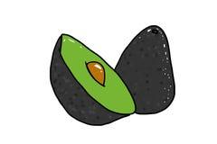 Avocado rozszczepiający w przyrodniej ilustraci Zdjęcie Royalty Free