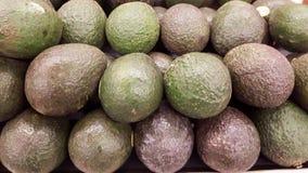 Avocado's Stock Afbeeldingen
