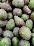 Avocado's achtergrondtextuur Stock Foto's