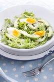 Avocado salad Royalty Free Stock Photo