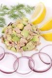 Avocado salad and tuna. Royalty Free Stock Photos