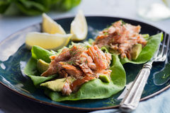 Avocado Salmon Wrap Stock Images