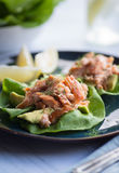 Avocado Salmon Wrap Royalty Free Stock Images