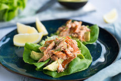 Avocado Salmon Wrap Stock Photo