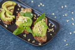 Avocado sandwich with basil and sprouts of green buckwheat on a. Black straight-headed plate, dark blue background. Healthy vegan food concept Royalty Free Stock Photos