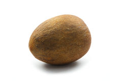 Avocado seed Royalty Free Stock Photo