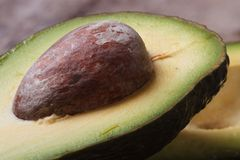 Avocado seed closeup. Ripe fruit macro Stock Photo