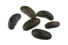 Avocado Seedless Fruit Stock Photos