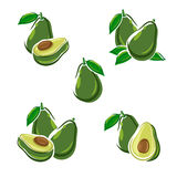 Avocado set. Vector Royalty Free Stock Photos