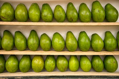 Avocado on shelf Royalty Free Stock Images