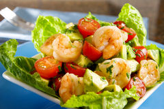 Avocado shrimp salad Stock Photography