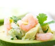 Avocado and Shrimps Salad stock photos