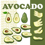 Avocado and slices isolated on white background. Vector illustration with avocado and slices isolated on white background.  Flat style healthy food.  Set with Royalty Free Stock Photography