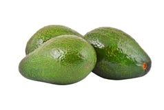 Avocado. Some avocado fruit, isolated on a white background Stock Photography