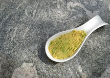 Avocado spread in white bowl Royalty Free Stock Photo