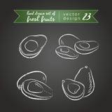 Avocado Stellen Sie von den frischen Früchten ein, ganz, halb und mit Blatt gebissen Auch im corel abgehobenen Betrag Lokalisiert vektor abbildung