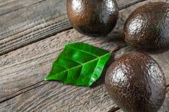 avocado su un fondo di legno Fotografie Stock Libere da Diritti