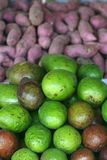 Avocado and Taro Stock Images