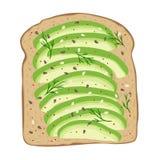 Avocado on toast bread. Delicious avocado sandwich. Vector illustration. Avocado toast. Fresh toasted bread with slices of ripe avocado. Delicious avocado royalty free illustration