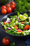 Avocado, tomato and arugula salad. Healthy vegan food. royalty free stock image