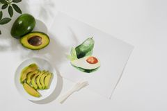 Avocado.Tropical summer concept made of avocado fruit and hand drawing illustration. Tropical summer concept made of avocado fruit and hand drawing illustration royalty free stock images