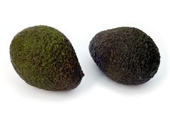 Avocado twee Royalty-vrije Stock Afbeelding