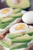 Avocado- und Frischkäse Stockfoto