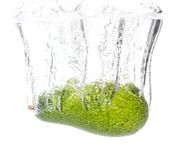 Avocado under water on a white background.  royalty free stock photos
