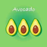 Avocado vector illustration Royalty Free Stock Images
